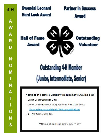 4-H award nominations flyer