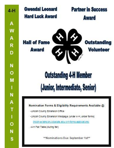 4-H award nominations flyer
