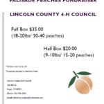Peaches.2018 Flyer