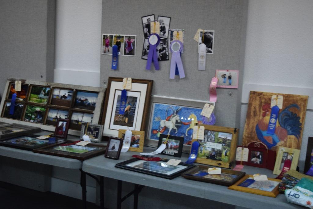 Open Class Picture Fair