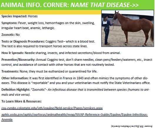 animal info.corner.EIA